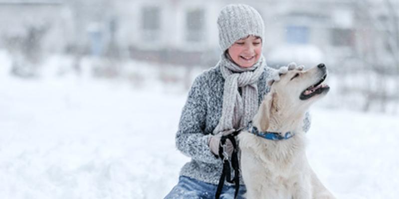Hunde gesund im Winter