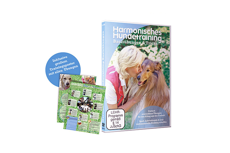 Hunde - Harmonisches Hundetraining