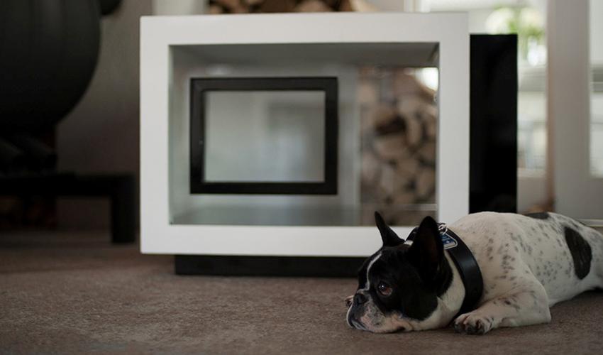 Hunde.de_Hundehütten_Little Suite