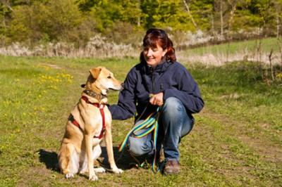 Zur Sicherheit an der Leine - Hunde im Zoo