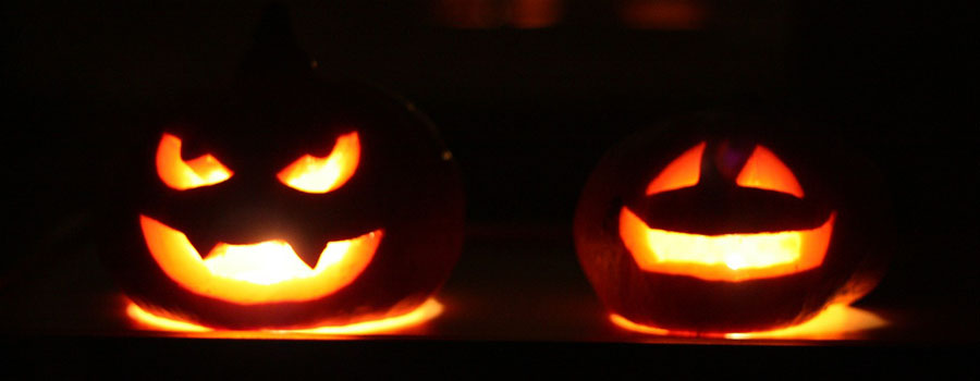 pixabay_Ein sicheres Halloween für HundeDie 13 besten Tipps