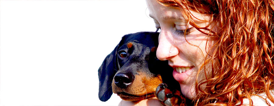 Versicherungsschutz für Hunde