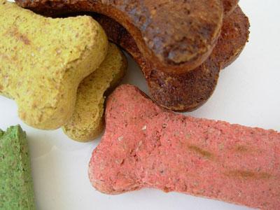 Hundeernährung: Die verschiedenen Futterarten