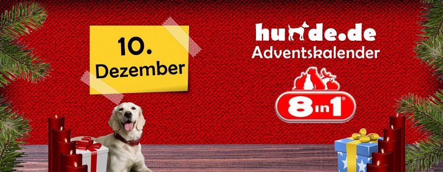 10. Dezember: 8in1 Hundesnacks
