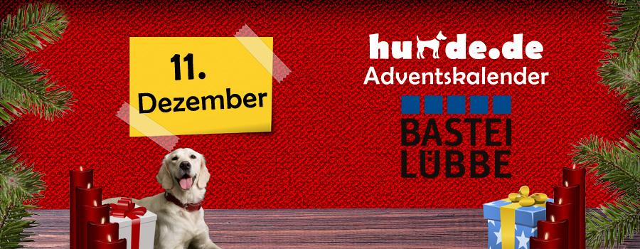11. Dezember: Buchpaket von Bastei Lübbe