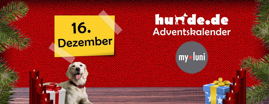 16. Dezember: Hundeset von my luni