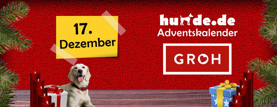 17. Dezember: Für Hundefreunde