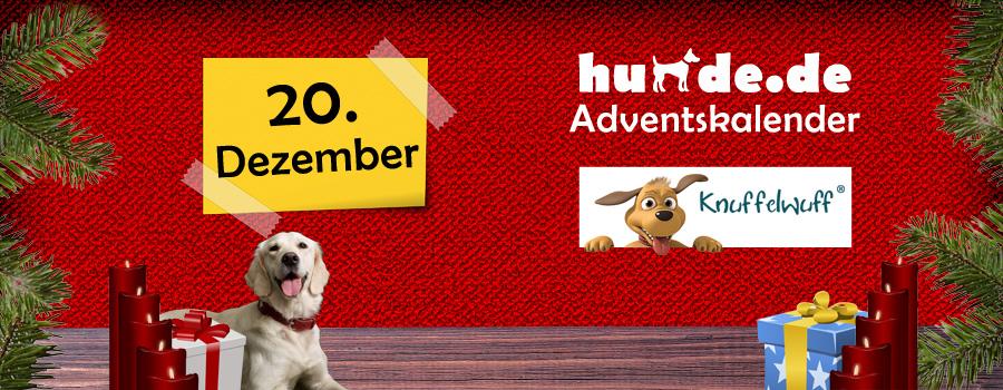 20. Dezember: Pfoten Hundebett XXL