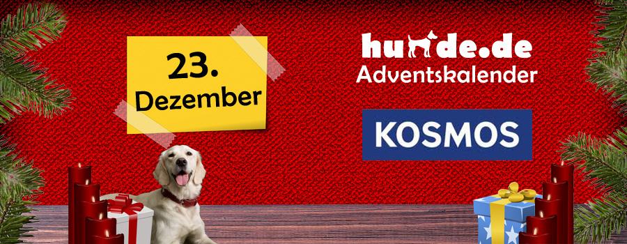 23. Dezember: Spielekiste für Hunde