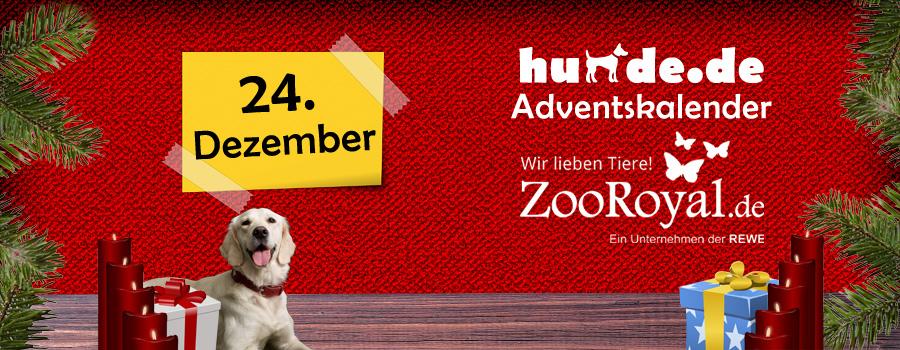 24. Dezember: Überraschungspaket für Hunde
