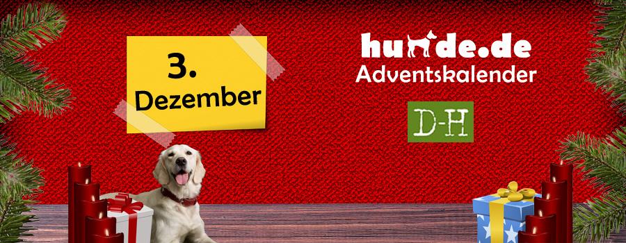 3. Dezember: Das Hundebuch