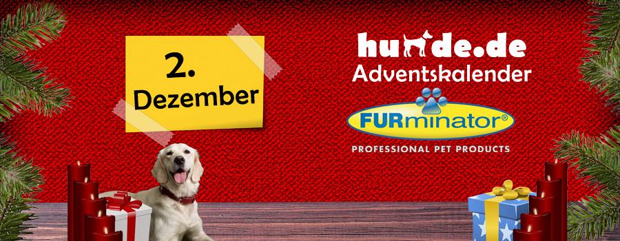 2. Dezember: FURminator Striegel für Hunde