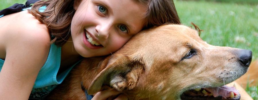 Leo & Leo - Mann mit Hund