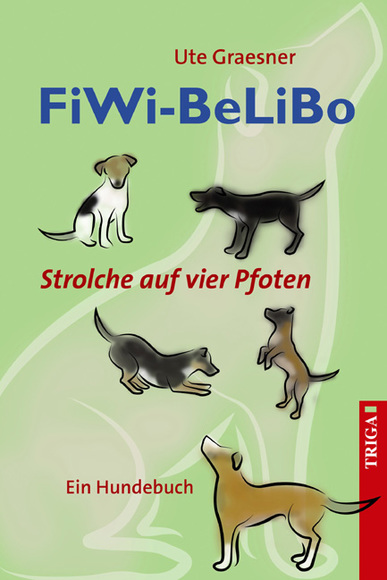 FiWi-BeLiBo