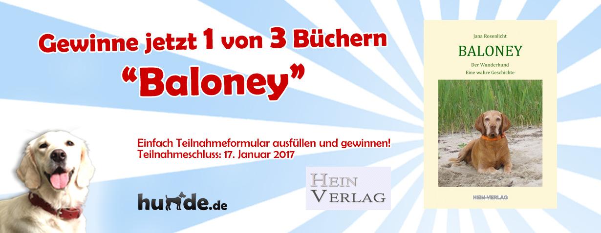 Gewinnspiel: Baloney – Der Wunderhund
