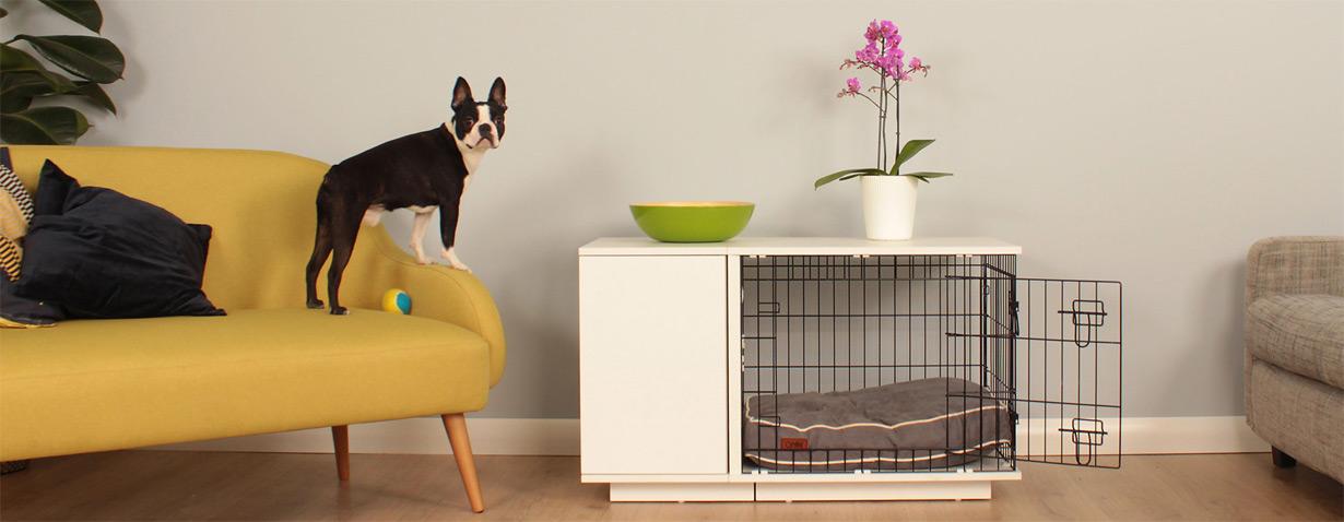 Die weltweit erste Hundebox mit integriertem Kleiderschrank