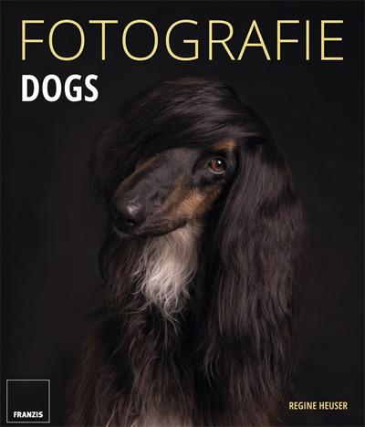 Fotografie Dogs