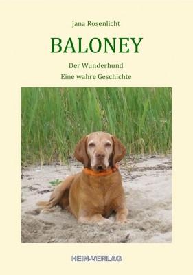 Baloney, der Wunderhund
