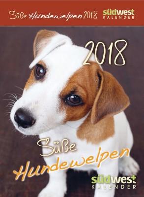 Suesse Hundewelpen 2018 ABK von