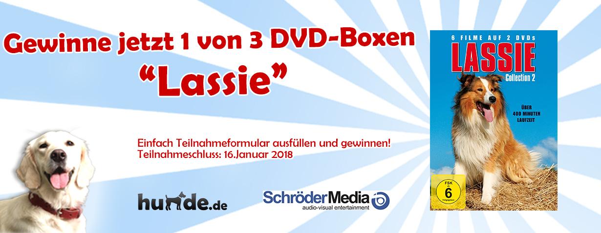 Gewinnspiel: Lassie-DVD-Box
