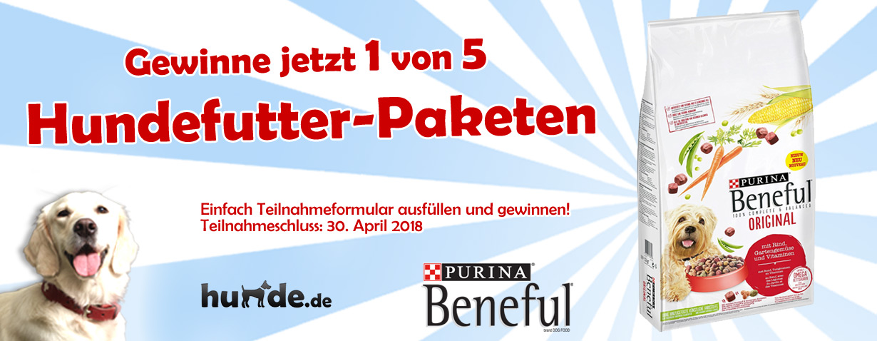 Gewinnspiel zu den BENEFUL Beschnupper Wochen - Gewinne 5 Hundefutter-Pakete im Wert von je 50 Euro!