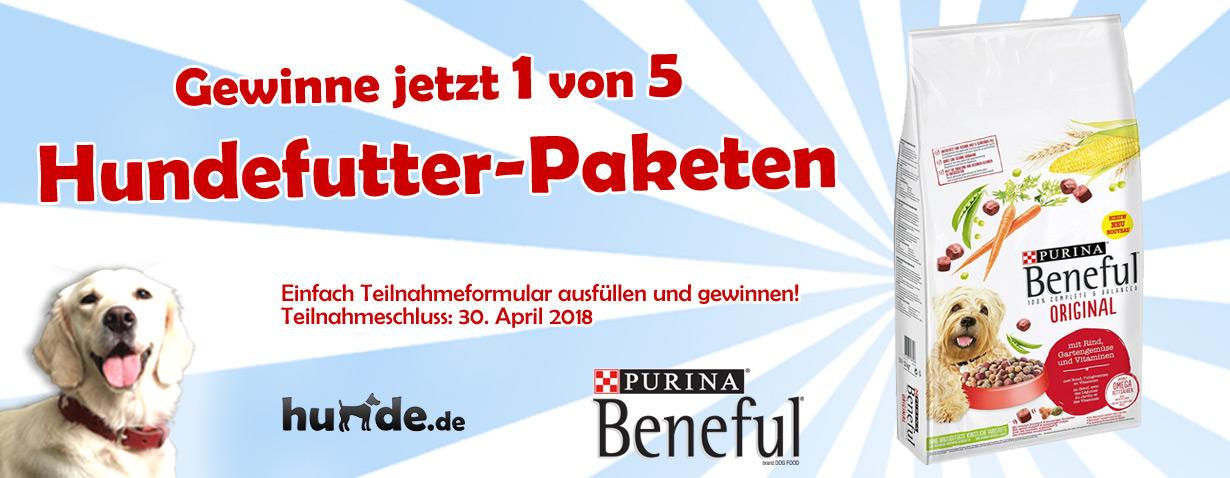 Gewinnspiel zu den BENEFUL Beschnupper Wochen - Gewinne 5 Hundefutter-Pakete im Wert von je 50 Euro!