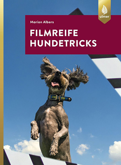 Filmreife Hundetricks