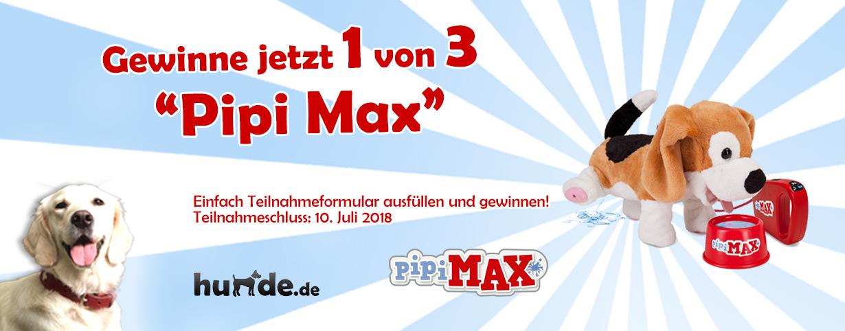 """Gewinnspiel """"Pipi Max"""""""