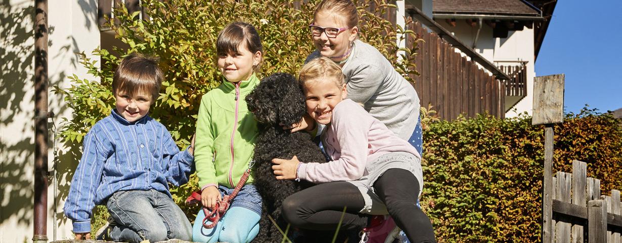 Mit dem Familienhund die Schweiz entdecken