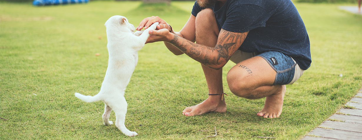 Pfotenstrecke: 10 Hunde mit ihrem Besitzer
