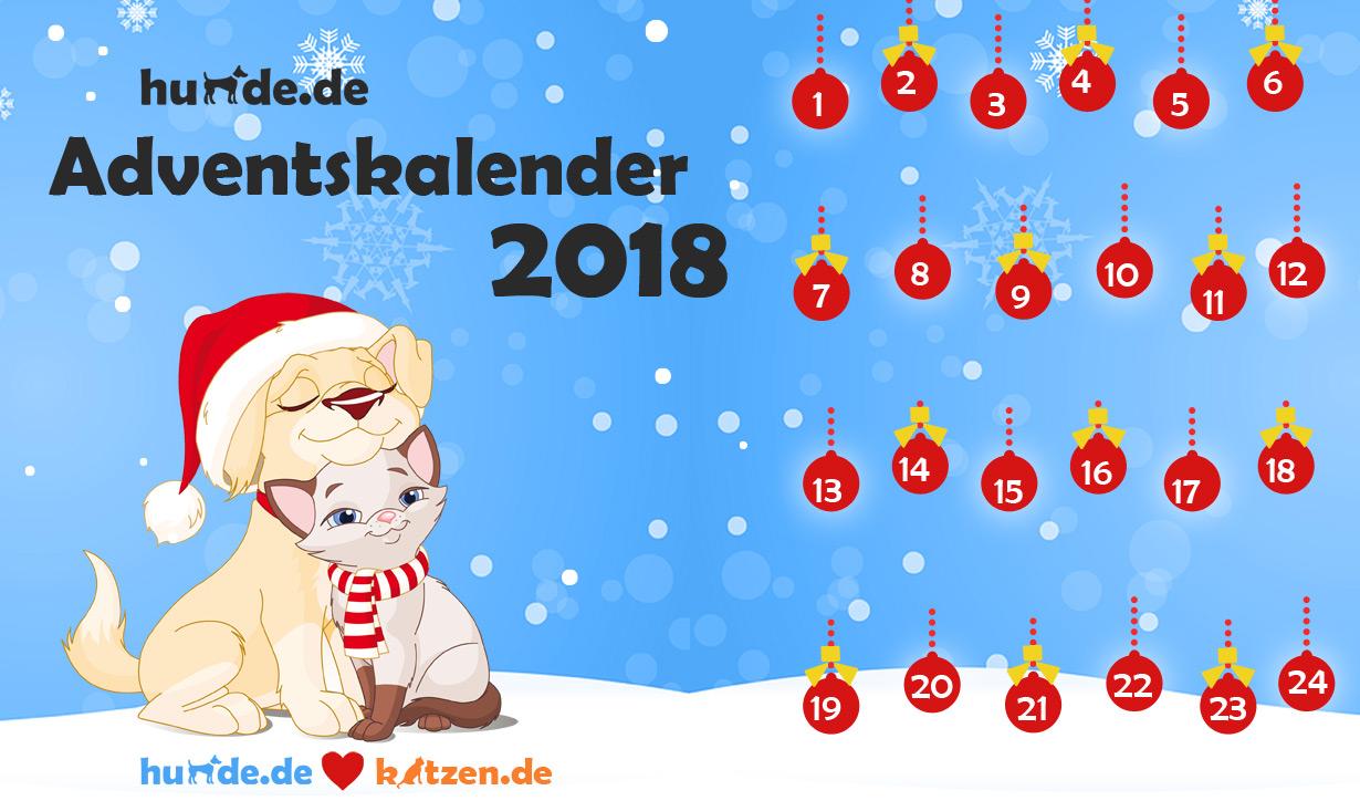 Der große hunde.de-Adventskalender 2018