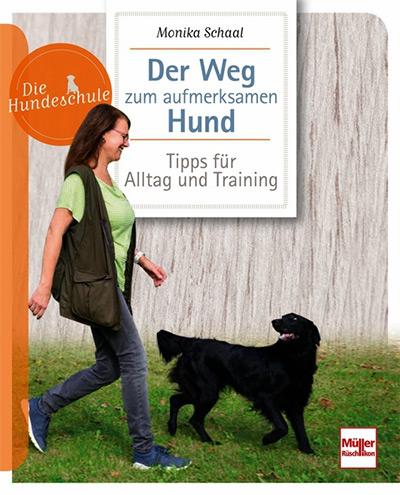 Der Weg zum aufmerksamen Hund