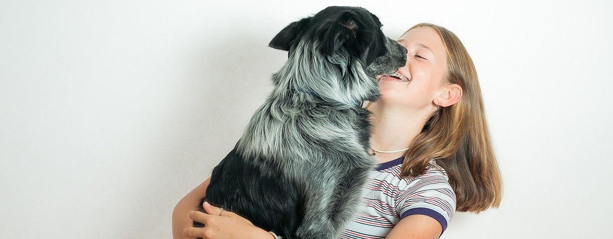 Wie alt ist ein Hund in Menschenjahren? - Altersformel mal 7 gilt nicht mehr