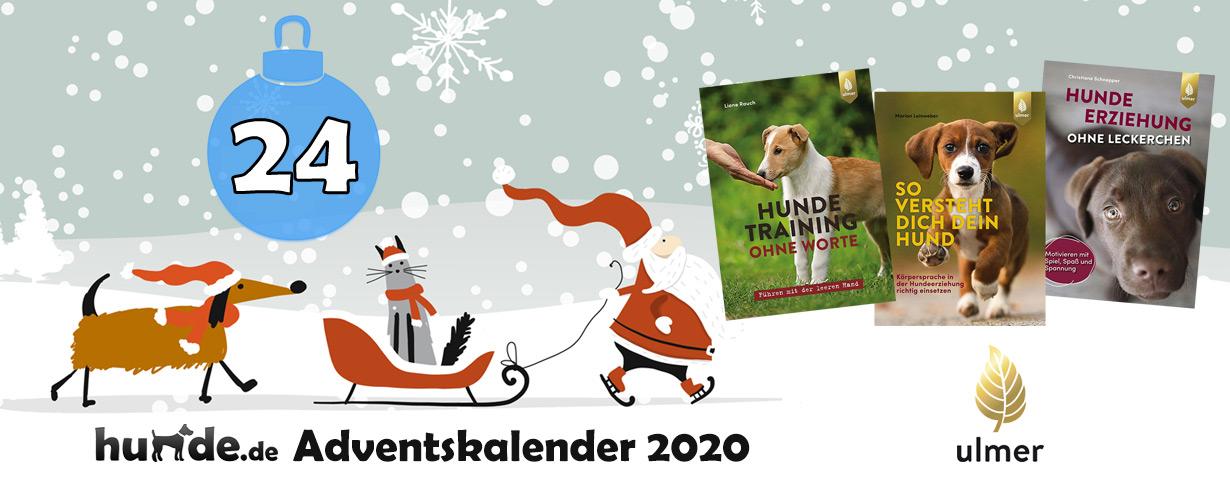 Hundebuch-Pakete aus dem Verlag Eugen Ulmer