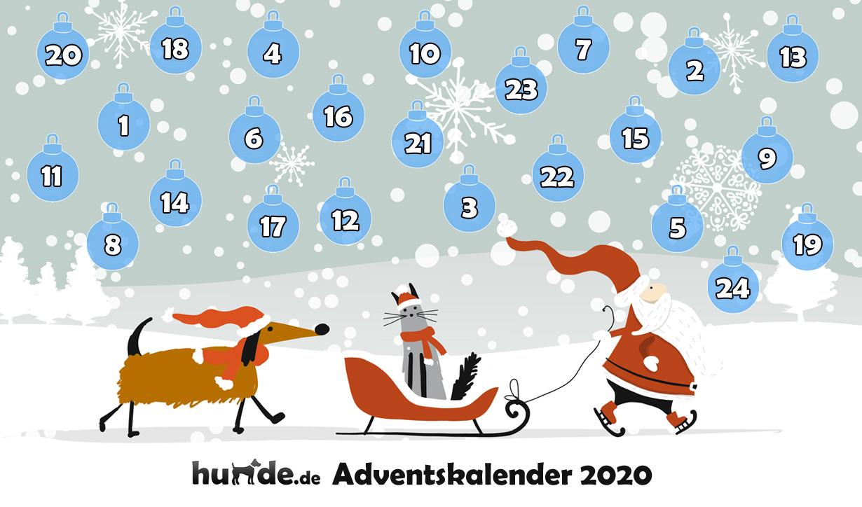 hunde.de Adventskalender 2020