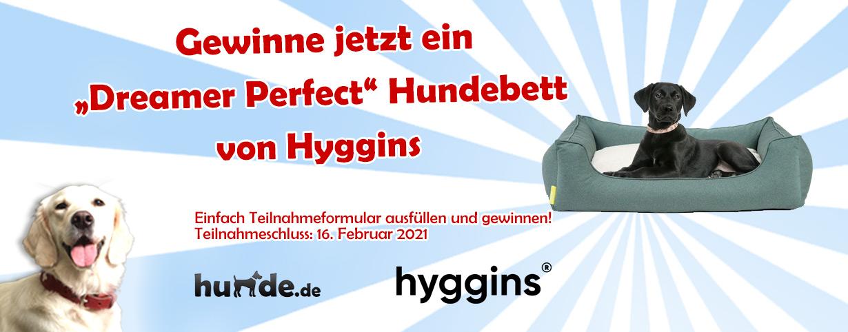 """""""Dreamer Perfect"""" Hundebett von Hyggins"""