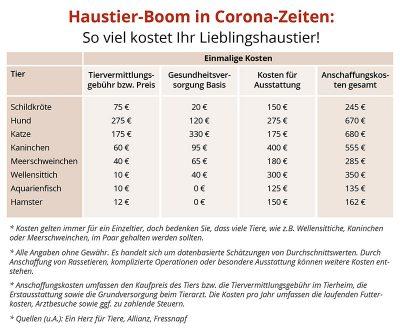 Haustier-Boom in Corona-Zeiten: So viel kostet Ihr Liebling im Laufe des Lebens!