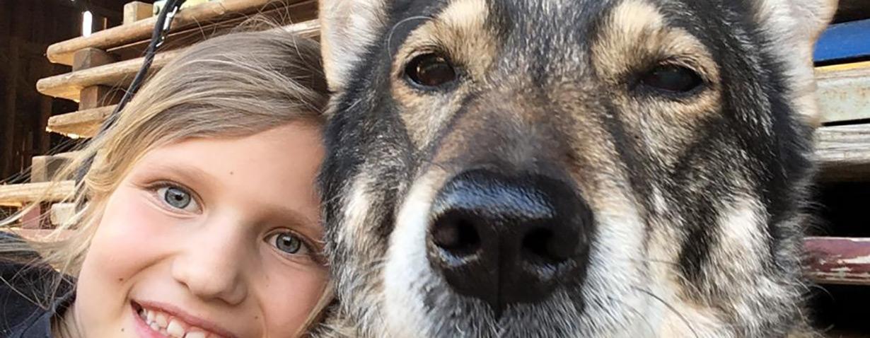 Auf einige grundlegende Leistungen sollten Tierbesitzer achten