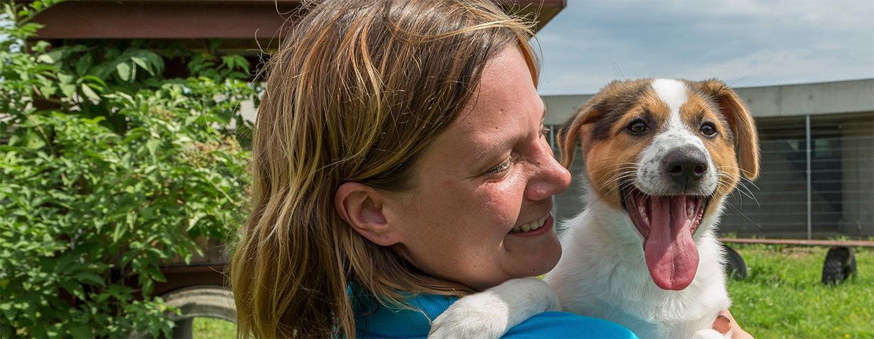 """Abgabe von """"Corona-Tieren"""": Tierheime füllen sich"""