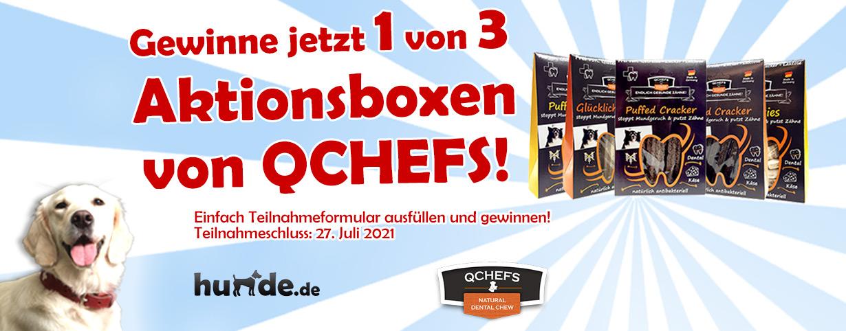 QCHEFS Aktionsboxen mit Käseknochen zum Knuspern