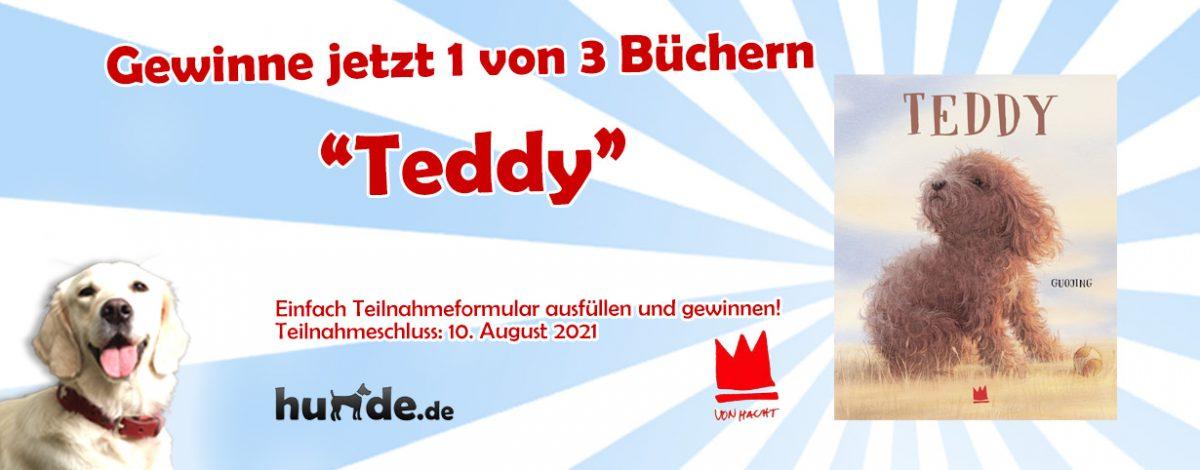 Gewinnspiel: Teddy