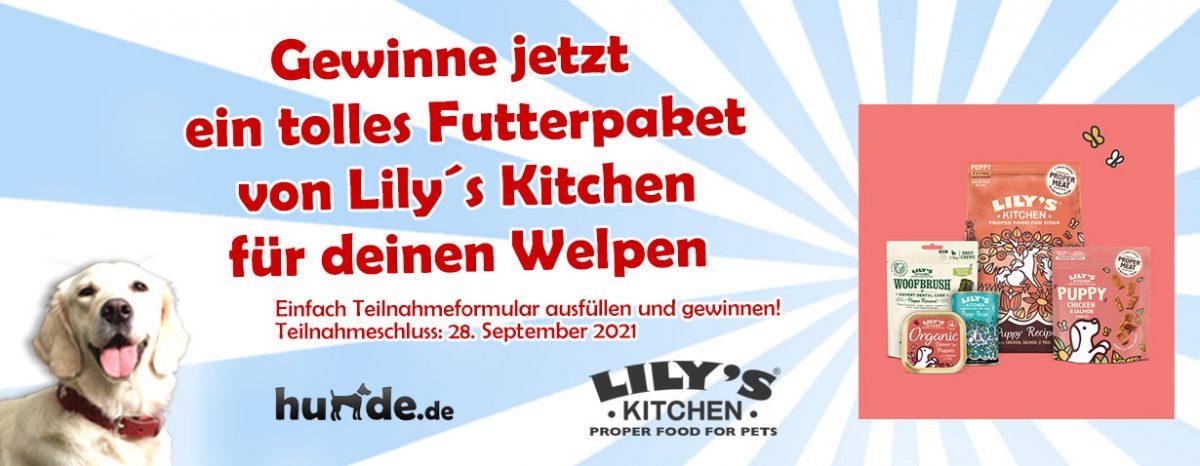 Gewinnspiel: Ein tolles Futterpaket von Lily´s Kitchen für deinen Welpen