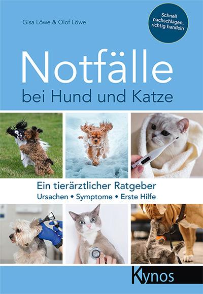 Notfälle bei Hund und Katze